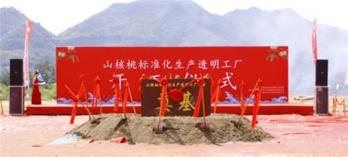 【一线投影】临安区年产10000吨山核桃标准化生产透明工厂项目开工!